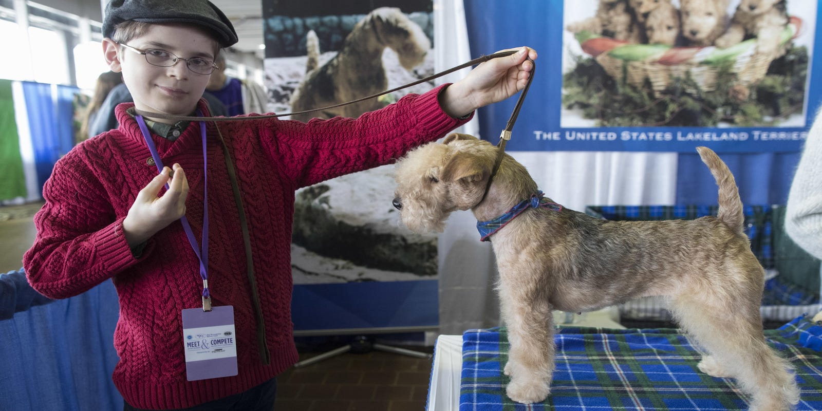 Dog show's young handlers take a grown-up sport in stride