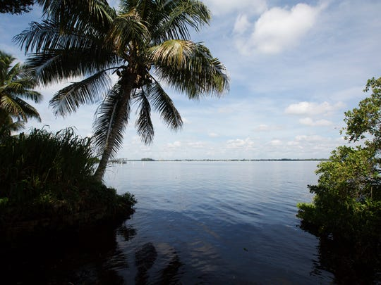 Since recent rains have saturated the area, the Caloosahatchee