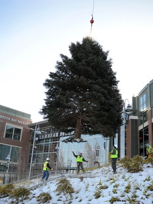 Workers guide the Green Bay Packers Festival of Lights tree into place at Lambeau Field, Monday, December 1, 2014. The tree is donated by Douglas Vanden Langenberg of Green Bay.