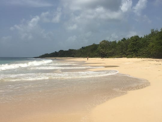 One of many beaches on the island of Martinique.