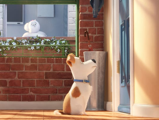 "Gidget and Max from ""The Secret Life of Pets"" are all"