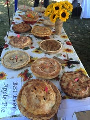 The pies are all lined up for the judges in Bristol.