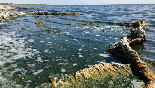 A hard crust protrudes from the Salton Sea along portions of the shore at the Salton Sea State Recreation Area.
