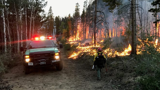 Firefighters conduct burnout operations on a fire burning in northwest Larimer County, known as the Johnson Creek fire.