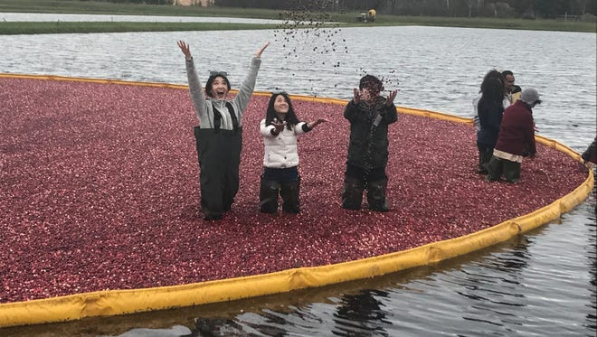 More than 20 food product buyers, media and influencers from China and India converged on Wisconsin's cranberry country as part of an international Reverse Trade Mission last week.