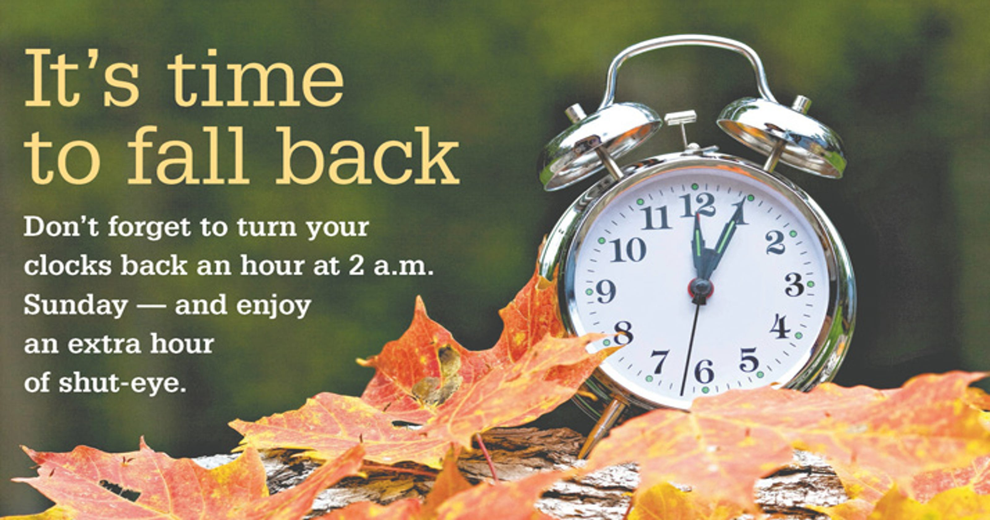 Image result for fall back time change