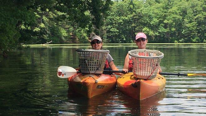 Trisha and Sierra Mullins, temporary seasonal NRWA staff, hand pull invasive water chestnut from the Nashua River.