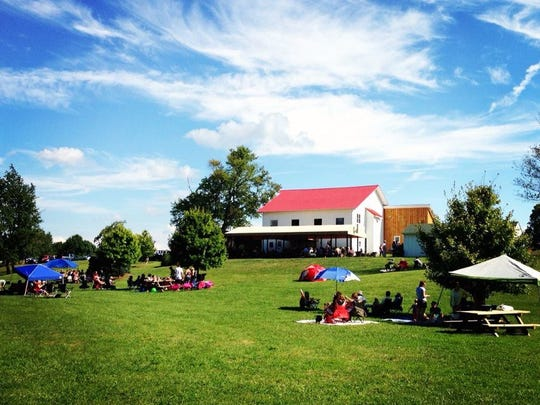 The large grassy outdoor at Mallow Run Winery in Bargersville