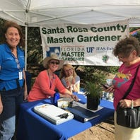 Outdoors: 2 'Play' events Sat.; Ocean Hour plans cleanup; Master gardener class opens up