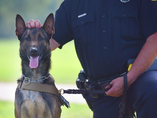 K9 officer in training, Spike, sits with officer Nic