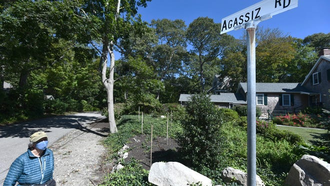 Agassiz Road resident Paula Pace looks up at her street sign as residents work to change its name to Jewel Cobb Road. The effort to rename the street comes after revelations regarding the racist background of its namesake, Louis Agassiz.
