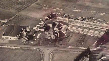 An aerial view of Frear's Garden Center, circa early 1950s.