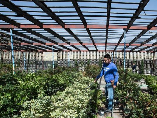 03162018-4-GardeningBizTab-4.jpg