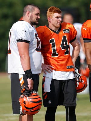 Bengals rookie center Russell Bodine, left, will get a quick test when he faces Baltimore's standout nose tackle Haloti Ngata.