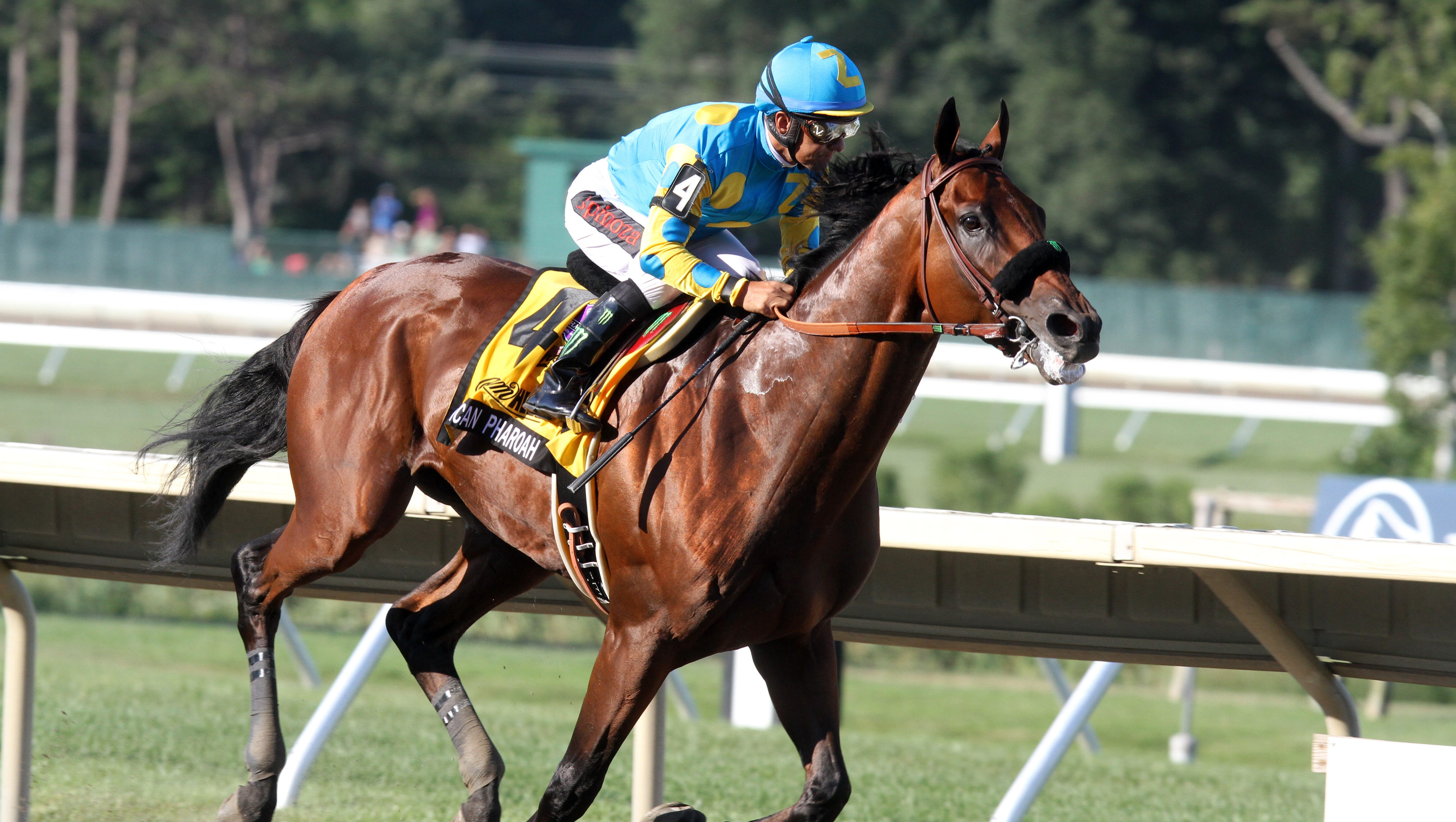 Monmouth Park American Pharoah Heads Field For 50th Haskell All Time Great Simulation