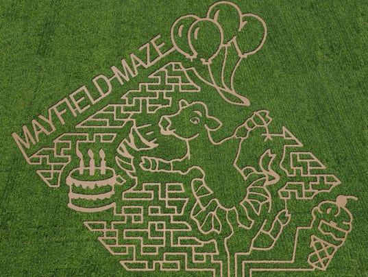 Mayfield Maze 2017
