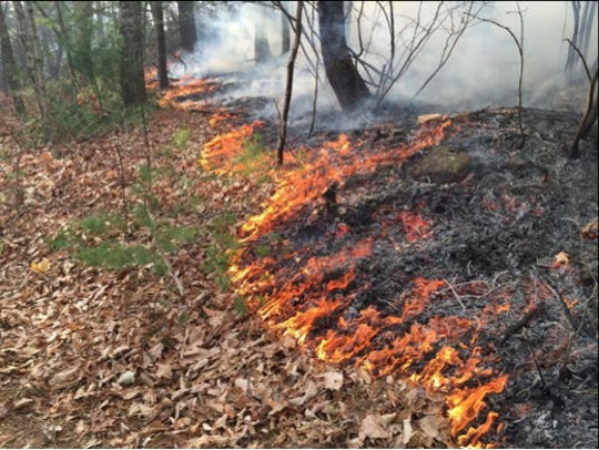 A wildfire in Amherst has been 10 percent contained.