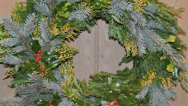 Blue spruce adds some wintery color to a traditional wreath of fir, cedar and holly.