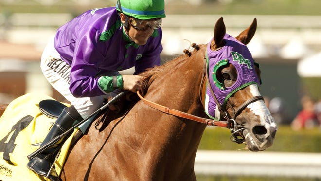 California Chrome, ridden here by Victor Espinoza to a wire-to-wire victory in the San Felipe Stakes at Santa Anita, will likely be the post-time favorite in the 140th Kentucky Derby at Churchill Downs on May 3.