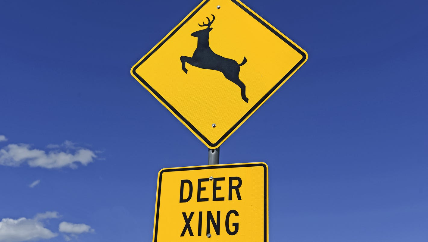 Iowa Department Of Transportation On Deer Crossing Signs. Ovarian Cancer Signs. Brittney Moses Signs. January 20 Signs. Privacy Signs. Tennis Fan Signs Of Stroke. Kappa Kappa Gamma Signs Of Stroke. Executive Signs Of Stroke. Aneurysm Signs