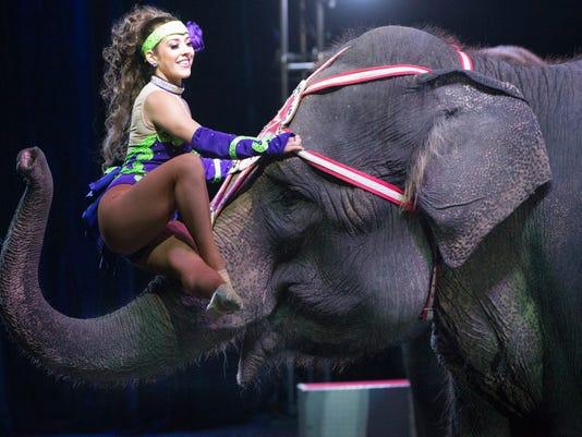 -circus-elephant.jpg