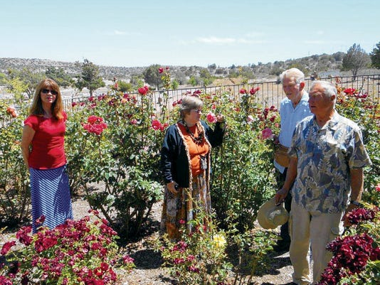 Standing in the rose garden at Memory Lane Cemetery are members of the Town and Country Garden Club admiring the beauty about them. From left are, Deborah Cosper-Hughs, secretary; Luanne Brooten, vice-president, along with Rider South and Dale Giese who are on the rose garden committee. Courtesy PhotoÊ