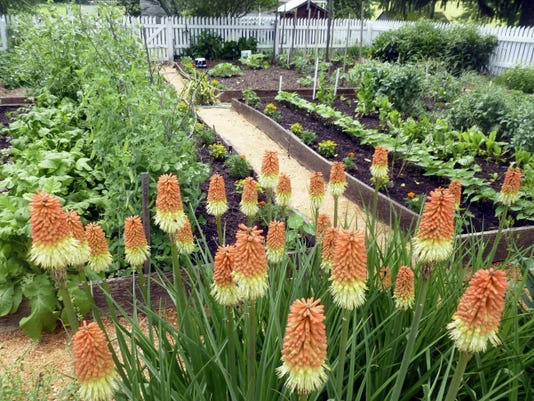Guests at the Cherry Fair are invited to take a stroll around the Heirloom Garden.