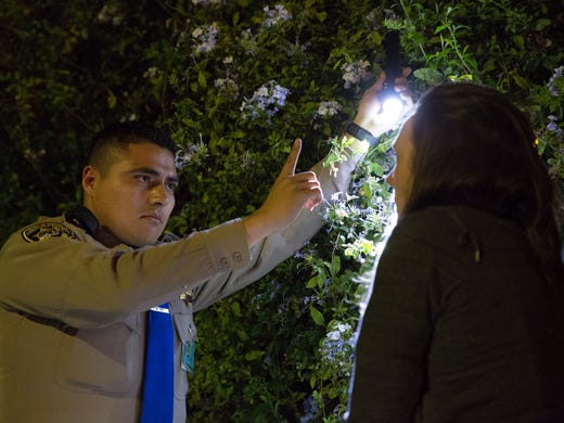 Officer Hector Villareal conducts a sobriety check