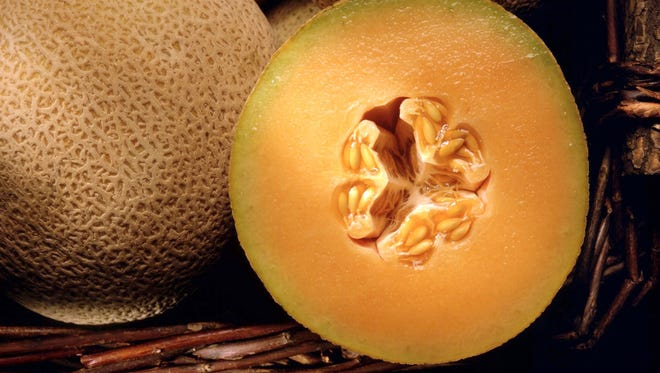Cantaloupes are a variety of muskmelon, which have a thick, pale netting over a golden colored rind.