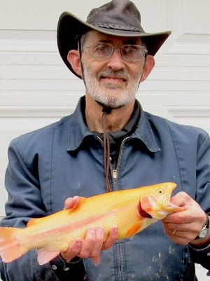 """Several """"golden rainbow trout"""" or palomino trout, like this one caught by Topekan Duane Johnson in November 2019 at Lake Shawnee, have been transferred to the Glen Elder Park Pond in Mitchell County during its most recent stocking on Dec. 3. About 375 pounds of rainbow trout were stocked, with more set to be stocked next month."""