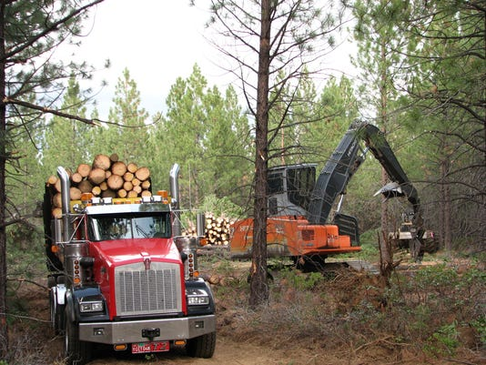 deschutes logging timber