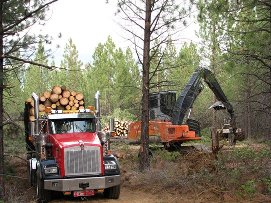 "Logging could be limited by ""stay home"" orders."