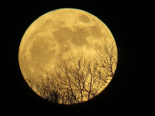 There's an added bonus for stargazers, astronomy nerds and telescope aficionados — January's blue moon on the 31st will feature a total lunar eclipse. Plus, both the January full moons will be super moons.
