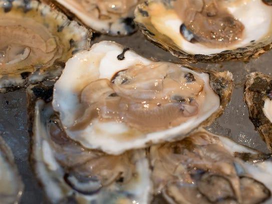 History on The Half Shell: Arts & Food Experience,