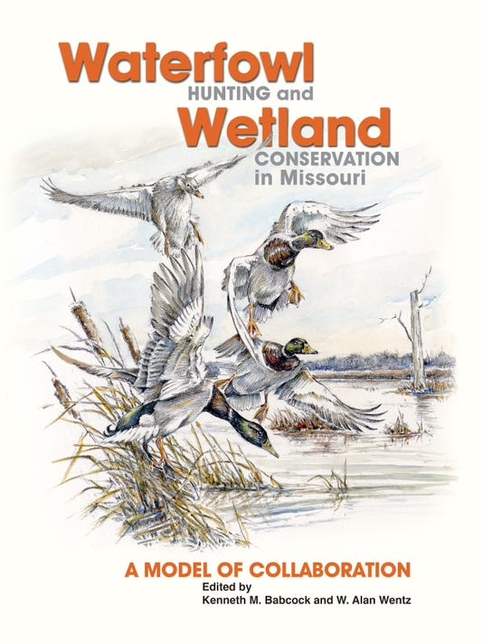 waterfowl_cover_final9x12.jpg