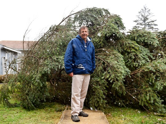 "Mark Clark stands for a portrait Thursday in front of ""Josh's tree,"" which fell during the previous night's storm. The evergreen, in the backyard of a York Township house rented out by Mark Clark, was planted by Clark's son Josh when Josh was in kindergarten. Josh Clark, who died in 2006, would have been 36 this year."