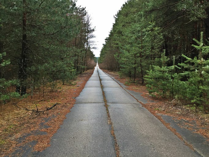 A road inside the Chernobyl Exclusion Zone stretches