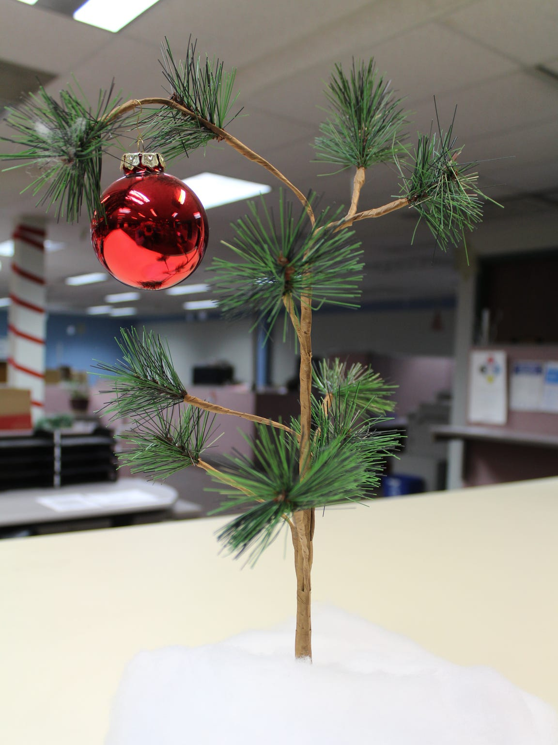 "The ""Charlie Brown Christmas  Tree"" has become an icon"
