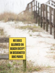 """""""No dog"""" signs along the beach in Pensacola on Wednesday, December 14, 2016."""