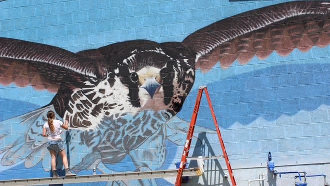 Artist volunteer BK Foxx adorned a side wall of the Palmyra Nature Cove Park center this week with a larger than life painting of the endangered peregrine falcon.