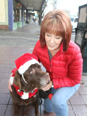 Cody, a 12-year-old chocolate Labrador, who is not available for adoption, sits with his owner Darla Biasi.