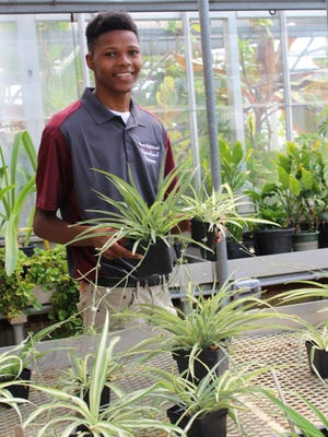 Jaylen Murray cares for houseplants in the greenhouse at Vincent High School.