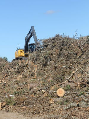 More than 6,500 tons of tree debris has been picked up following Hurricane Hermine Sept. 2.