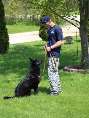 Seth Pionke, an officer with the Plover Police Department, trains with a police dog, Ice.