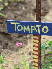With many Wisconsin residents forced to stay home, businesses are reportingincreased interest in home vegetable gardeningas the new coronavirus pandemic continues.