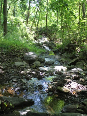 One of the two tributaries of Rock Brook which cross this 62-acre pivotally-situated open space parcel, fronting on Spring Hill Road, which Montgomery Twp. officials have now preserved.