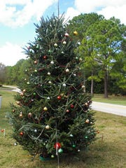 Pictured is the Christmas tree used by the Eagle Ridge Community in 2015. Their 2016 tree has gone missing.