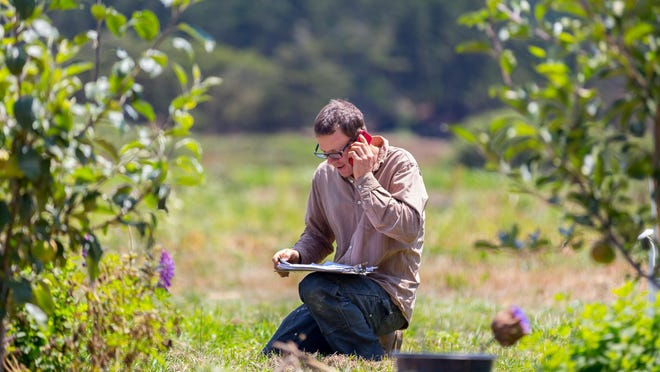 John Vars, one of Fifth Crow Farm's three founding partners, is shown in the orchard in Pescadero, California.