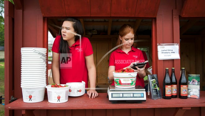 Hannah Waring (left), a student at Loudoun Valley High School, and Abby McDonough, a student at Liberty University, work in the strawberry stand at Wegmeyer Farms in Hamilton, Va. Waring and McDonough are working at Wegmeyer Farms for the summer. Summer jobs are vanishing as U.S. teens spend more time in school and face competition from older workers.