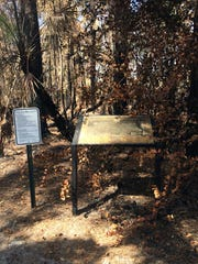 A brush fire in early March burned a major portion of Serenity Walk Park on the western edge of Collier Boulevard.